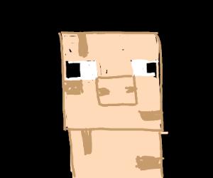 A noseless Minecraft pig