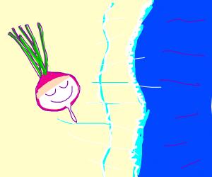 Happy turnip washed up on beach