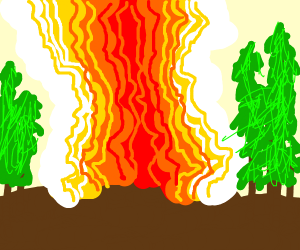 Nuclear explosion in a forest