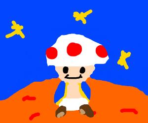 Toad on Mars