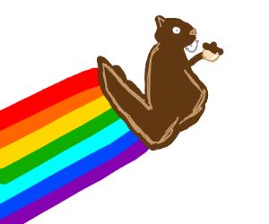 Rainbow Squirrel