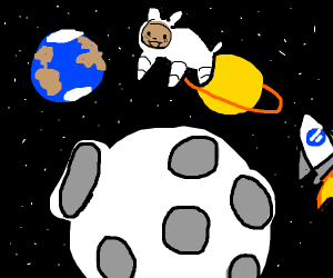 A small white dog in space with brown face