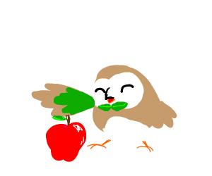 Rowlet eats an apple