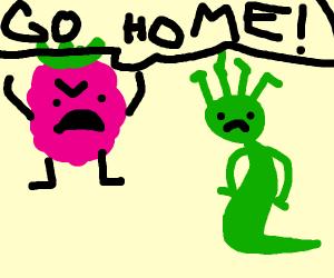 Raspberry firing Medusa