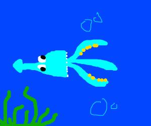 swimming blue squid