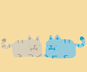 2 cats lying together