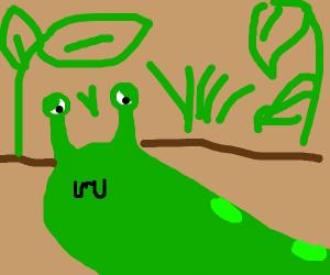 Sad Slug