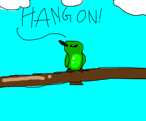 green bird says hang on!