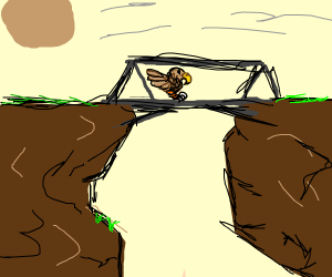 Hawk crossing a Bridge