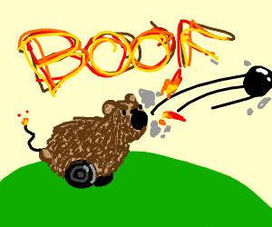 It's a bear cannon!