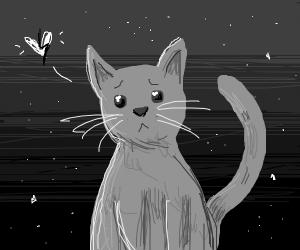 grayscale sad cat