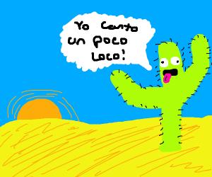 Cactus canta Un Poco Loco