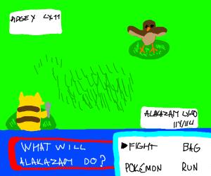 Pokemon battle