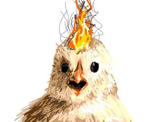 A literal hot chick