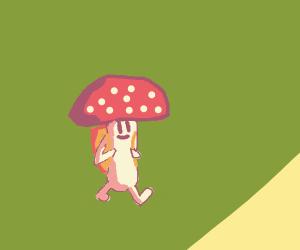 Teenage Mushroom