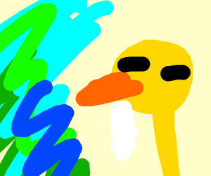 Duck seizures