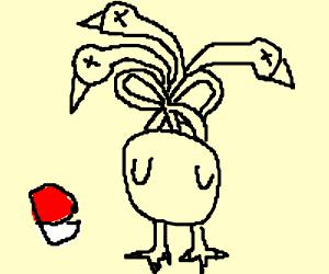 Tangled Dodrio