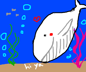 Whale greeting the ground