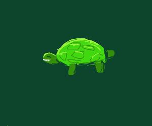 Happy turtle with sharp teeth