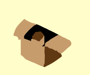 brown square in an opened box