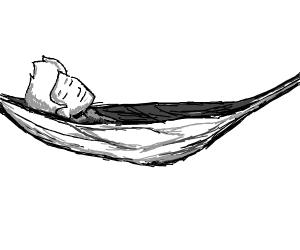 Jazza sleeping in a hammock