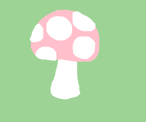 A li'l toadstool. A fairy's home, perhaps?