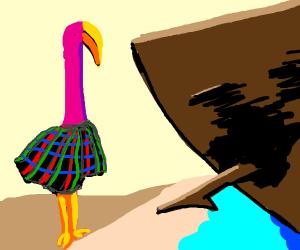 Shipwrecked, Scottish flamingo