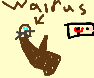 a happy walrus with an erection