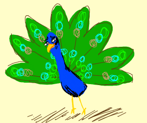 Crusty Peacock
