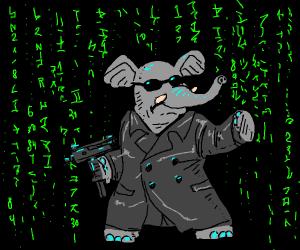 Hibrid person-elephant haking matrix