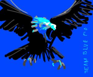 Team Blue PIO!
