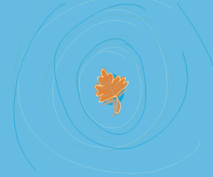 leaf floating around in water