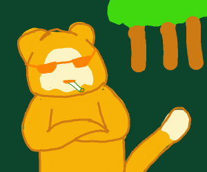 dank monkey in forest with sunglasses