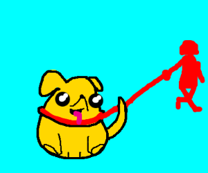 Dog missing eye is being walked by red woman