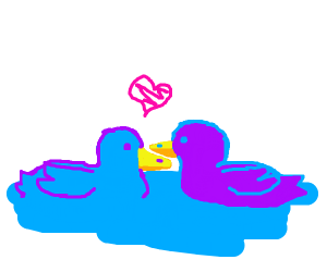 Blue and purple duck in love
