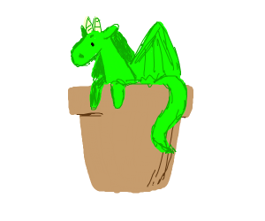 Dragon in a pot