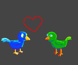Blue Bird Falls In Love