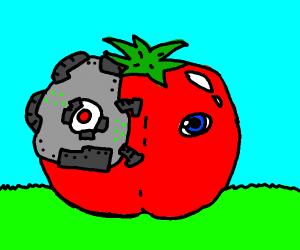 Robot Tomato!
