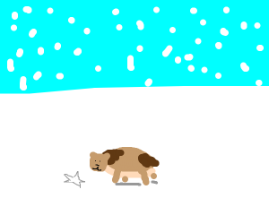 hamster drawing a star in the snow