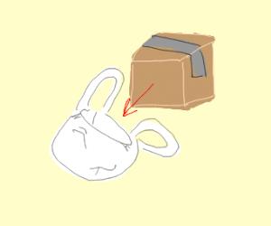 A box going into a bag
