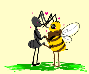 ant and bee  in love