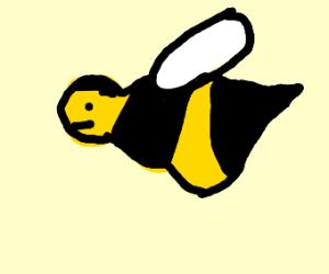 Bee who's abdomen is waaay too big