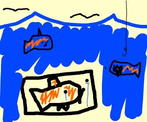 fish in a box at sea