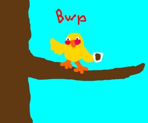 A bird getting drunk