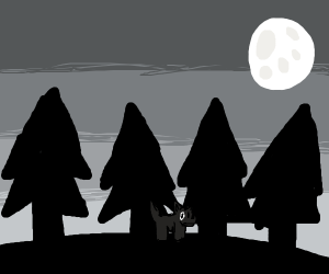 Dog in the forest. Full moon