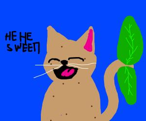 vegatable cat say hehe sweet