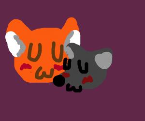 Fox x Mouse