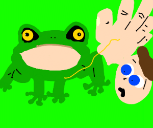 Frog pees on a hand
