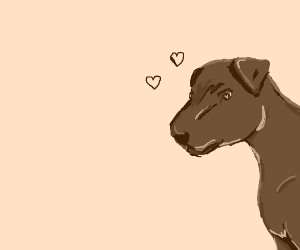 Brown dog in love