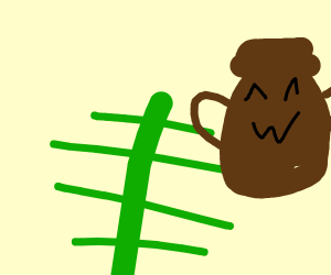 Fern with a proud pot